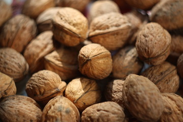 walnut in nutshell