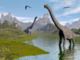 Fototapety Brachiosaurus dinosaurs in water - 3D render