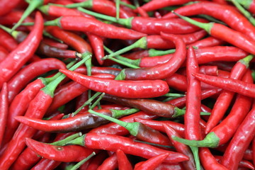 background of thai red chili