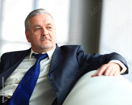 Handsome businessman sitting on the sofa
