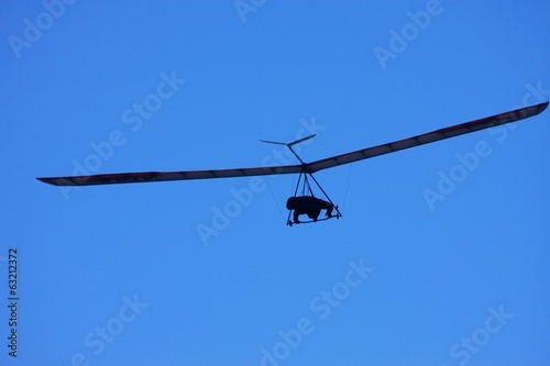 Hang Glider - 63212372