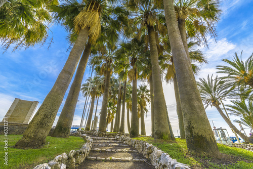 Walk through the Palms