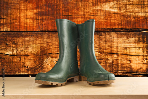 Green rubber boots for garden work