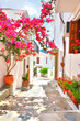 Leinwanddruck Bild - Bougainvillea on the narrow streets of Skopelos, Greece