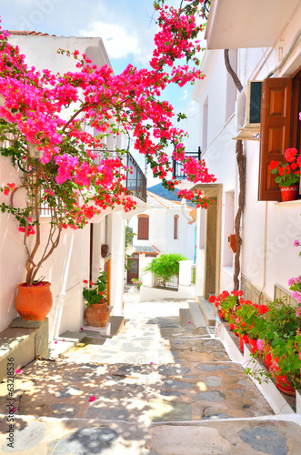 Bougainvillea on the narrow streets of Skopelos, Greece