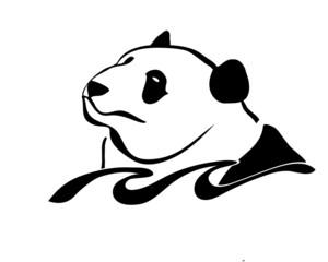 panda swim