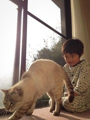 Cat and Boy