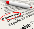 Immersion Word Dictionary Definition Circled Experience