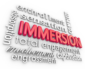 Immersion 3D Word Background Total Involvement Captivation