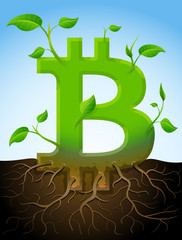 Growing bitcoin symbol like plant with leaves and roots