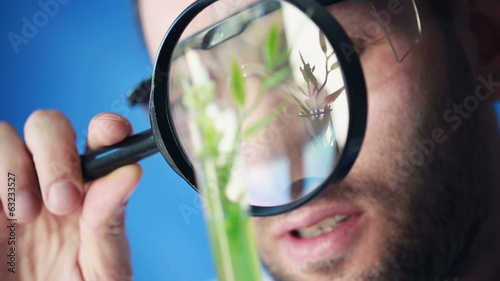 Biochemist looking through magnifying glass and examine plant