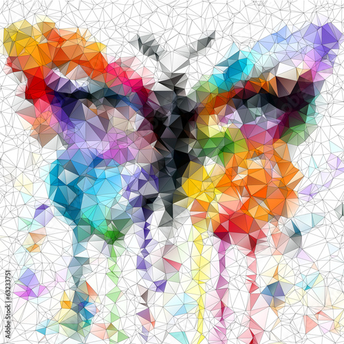 multicolor bright butterfly abstract geometric background © Egor Lisovskiy