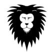 LionsHead