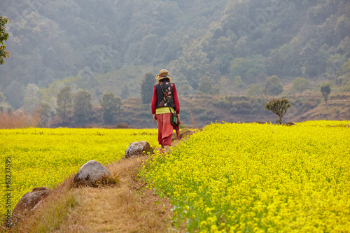 woman walking on the yellow field in Himalaya