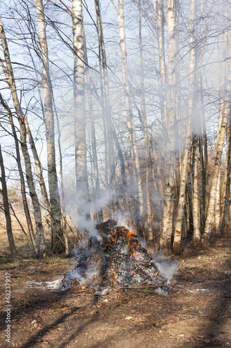 Smoking bonfire at forest