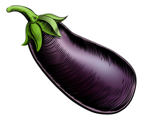 Brinjal vintage woodcut illustration