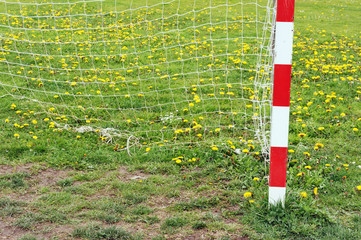 football goal post and net in spring