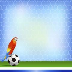 サッカー ブラジル オウム 背景 Brazil and Football background