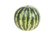 Single striped watermelon