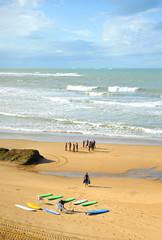 Grupo de surfistas en la playa, aprendizaje