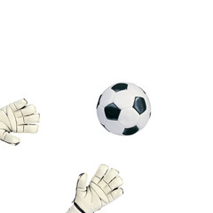 Goalkeeper catches the ball on white background