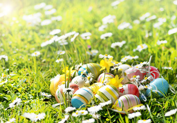 Ostereier auf Blumenwiese