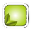 öko button grün