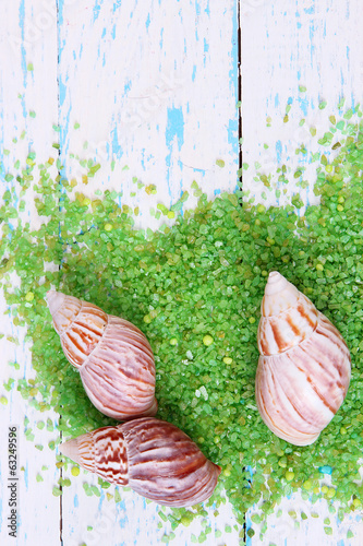 Sea salt crystals with sea shells on color wooden background