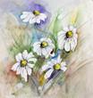 Quadro Ladybug on daisies