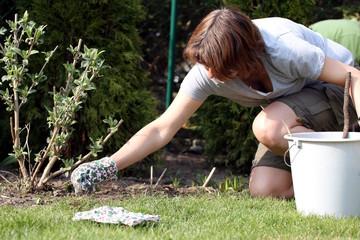 Frau in Sonne bei Gartenarbeit, Unkraut jäten