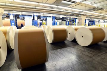 Papierrollen in Druckerei // Paper rolls in printing