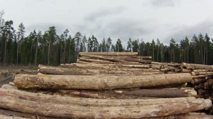 Raw Wood Storage, air view