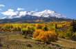 Colorful Colorado mountain in autumn
