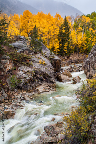 fall color in Colorado mountain