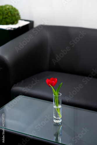 Red tulip in the vase in room with black sofa