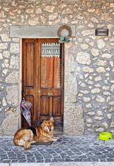 cane sdraiato su zerbino