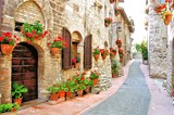 Fototapety Picturesque lane with flowers in an Italian hill town