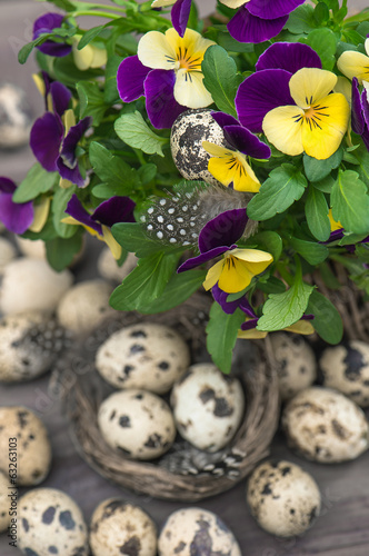 pansy flowers and quail eggs