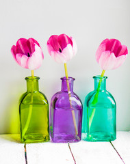 Pink tulips in colorful vases on white background
