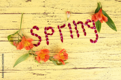 Romantic spring letters made of pink petals,