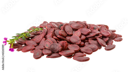 Red Pumpkin seeds