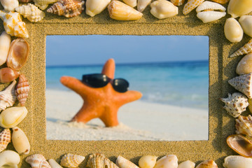 Sea Shell Sand Frame And A Starfish