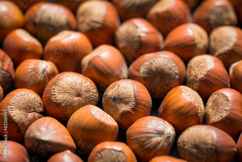 Hazelnuts as background. Selective focus.
