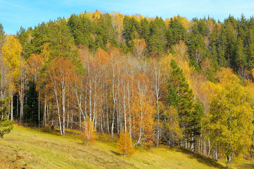 Autumn forest in Ural mountains