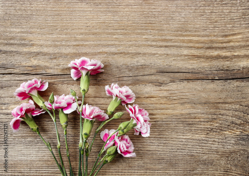 Pink carnation flowers isolated on wooden background