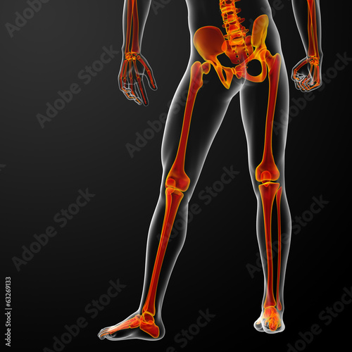 3d rendered red skeleton