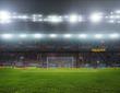 stadium with fans