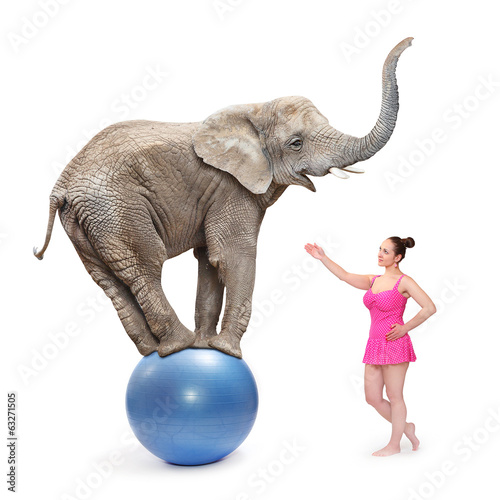 Circus clown girl and elephant balancing on a blue ball.