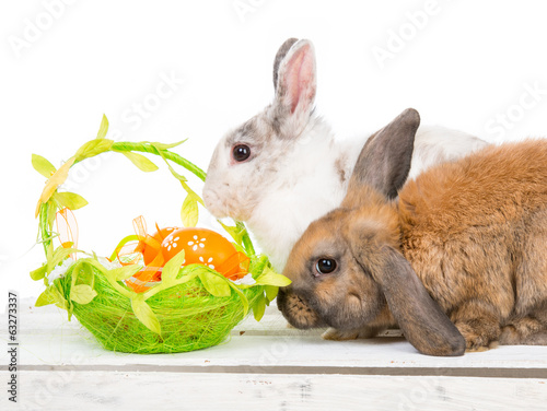 rabbits and easter basket