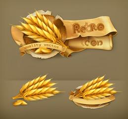 Wheat, retro vector icon